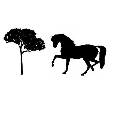 Registri Allevamenti e Fitosanitari